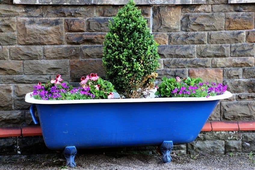 Bath planter pot
