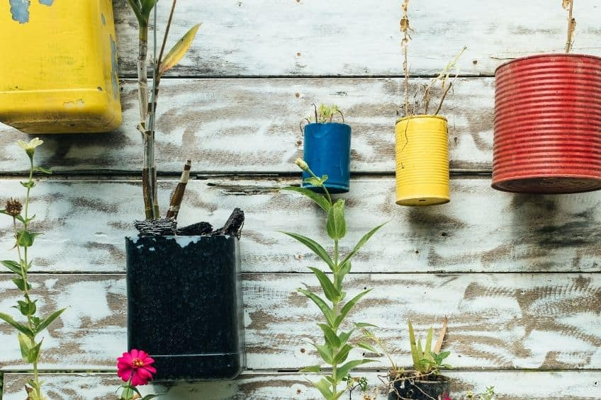 Upcycled tin can plant pots