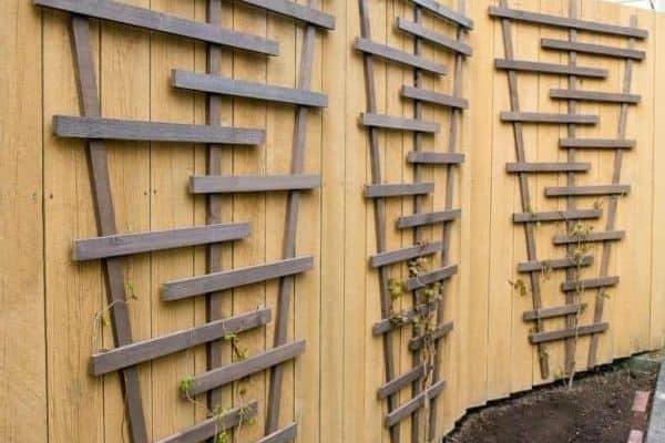 timber fence trellis
