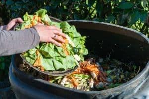 Small Garden Composting Ideas